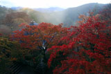 鞍馬寺 紅葉と比叡山を望む