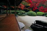 詩仙堂 紅葉の唐様庭園