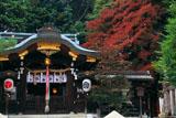 京都八大神社 本殿と紅葉