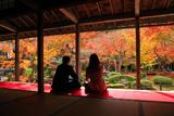 圓光寺 書院からの紅葉庭園