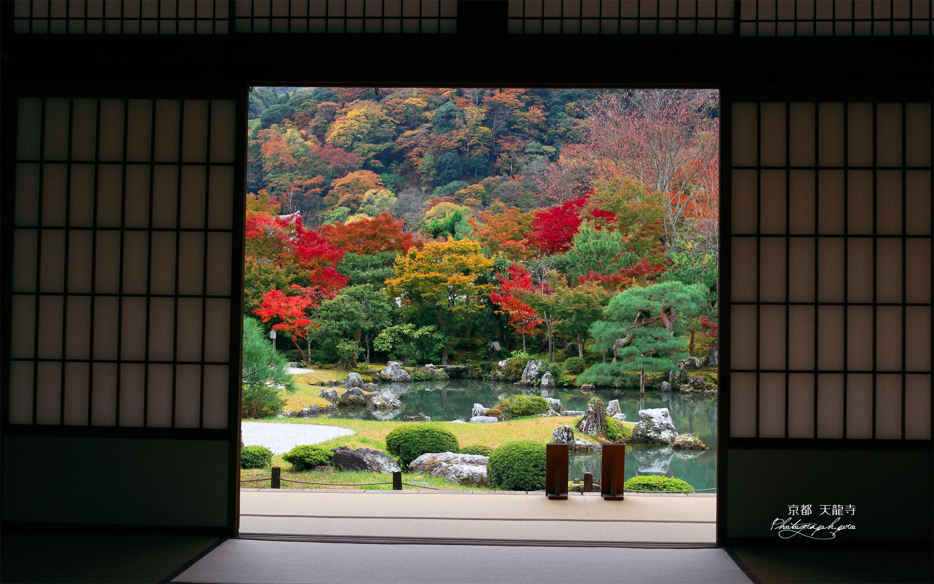 紅葉の天龍寺曹源池庭園