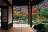 小方丈から紅葉の天龍寺曹源池庭園