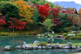 天龍寺曹源池庭園と多宝殿