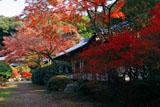 醍醐寺伝法学院