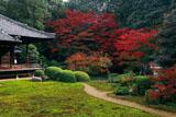 紅葉の随心院庭園