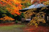 京都金蔵寺 紅葉の護摩堂