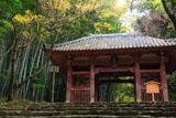 京都勝持寺 黄葉の仁王門
