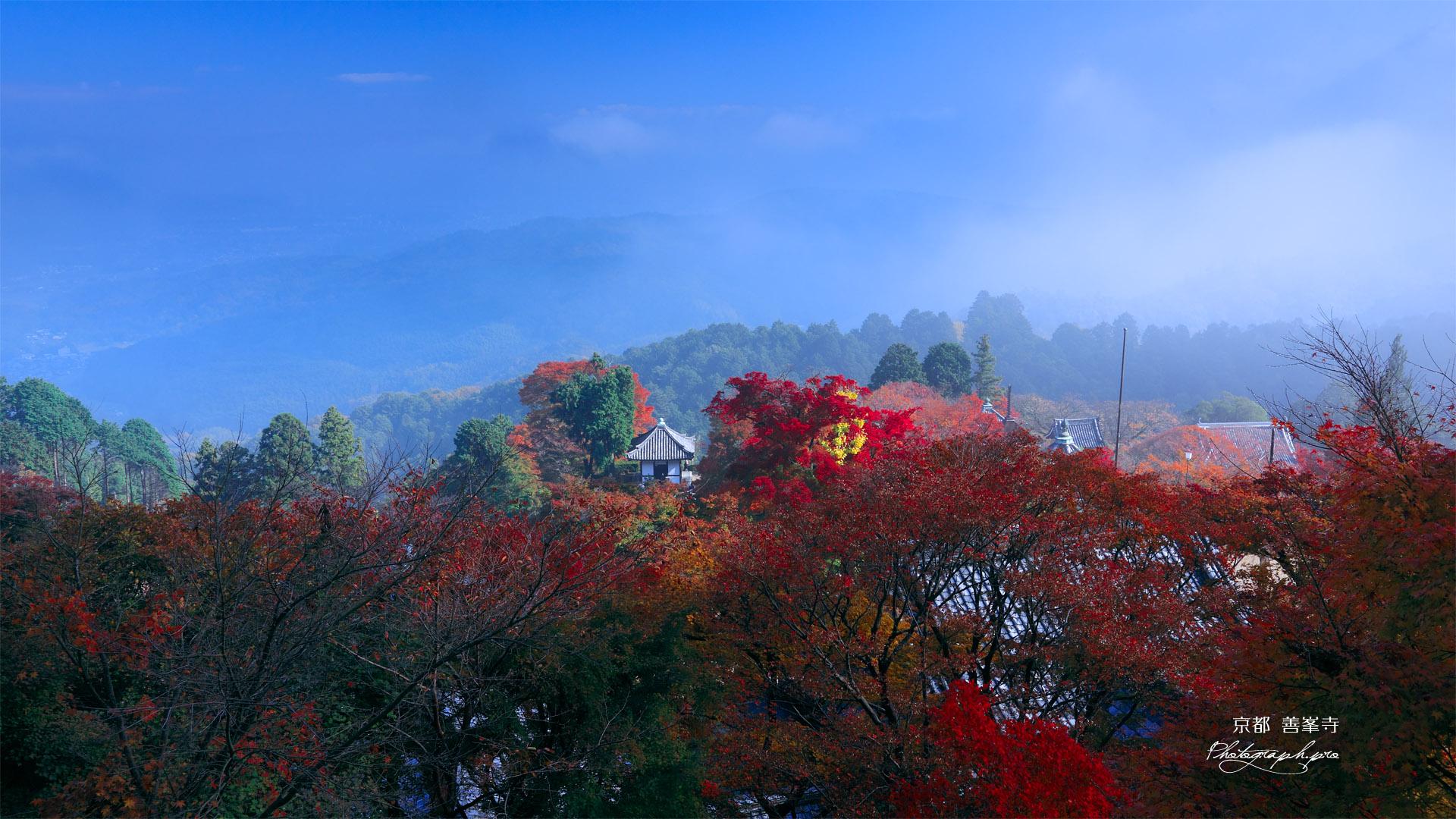 善峯寺の霧がとれて