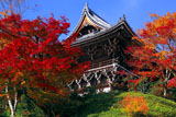善峯寺の紅葉の山門