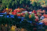 極彩色の善峯寺境内