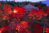 将軍塚大日堂と紅葉ライトアップ