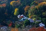 円覚寺から紅葉の東慶寺
