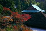 円覚寺龍隠庵から紅葉の境内