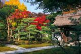 鎌倉長寿寺 紅葉と山門