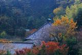 鎌倉光則寺の紅葉の堂宇