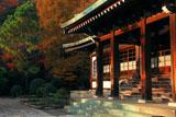 鎌倉龍宝寺 夕照の本堂