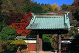 鎌倉久成寺 紅葉と山門