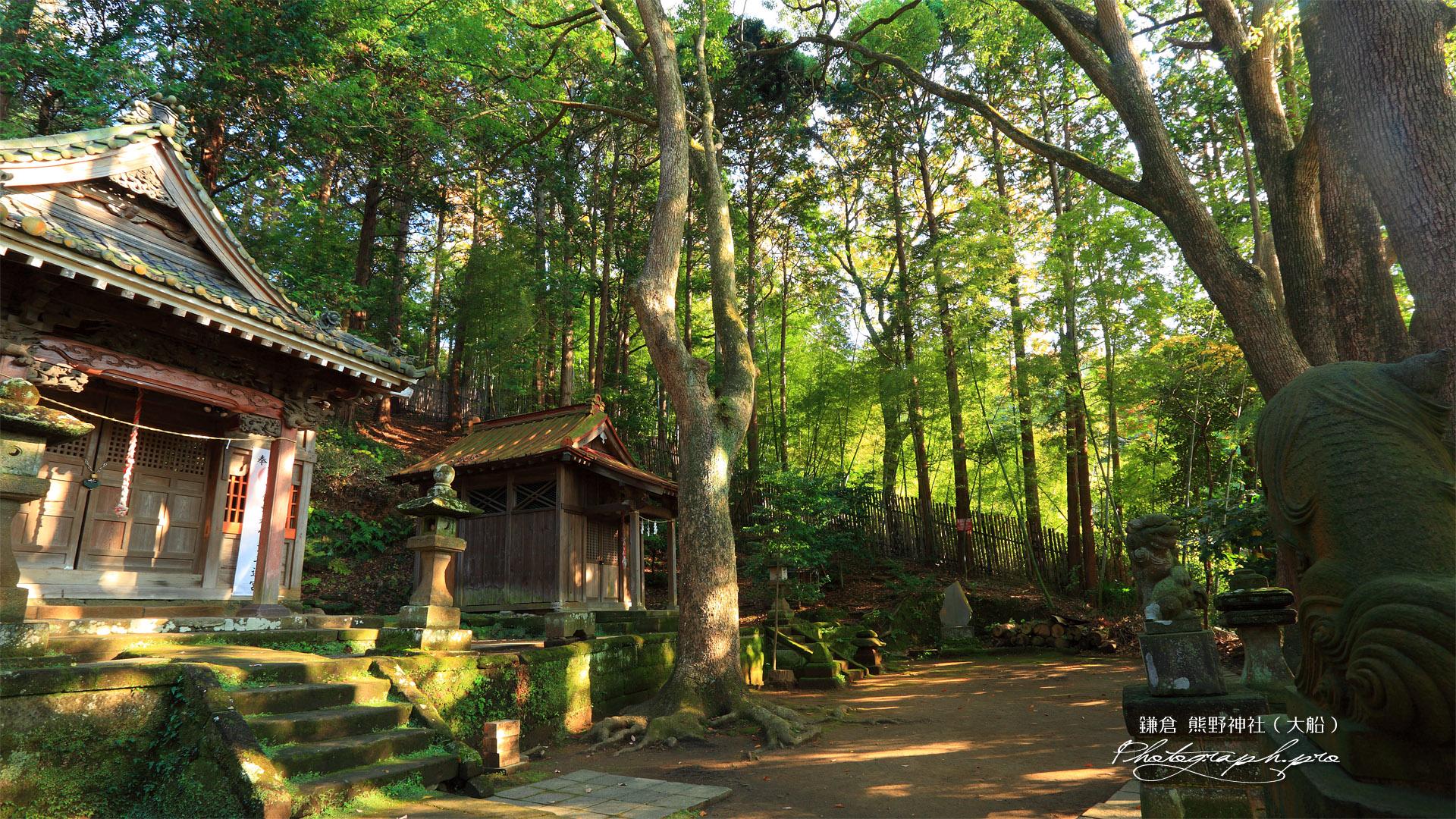 熊野神社(大船) 本殿と末社