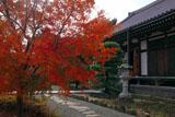 鎌倉大慶寺 紅葉と本堂