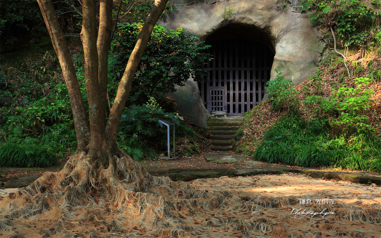 鎌倉光則寺の土牢とアート 壁紙