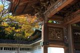 龍口寺山門と黄葉