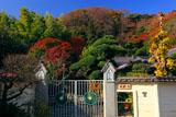 鎌倉英勝寺通用門と紅葉の山内