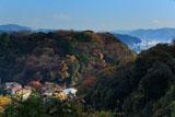 鎌倉長谷 大仏切通からの長谷の紅葉