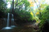 称名寺 紅葉の男滝