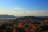 パノラマ台から雑木紅葉の逗子