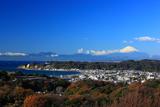 パノラマ台から雑木紅葉の鎌倉