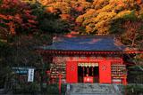 荏柄天神社拝殿と紅葉