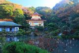 光明寺記主庭園の紅葉