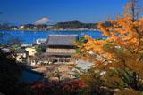 光明寺山門と富士山