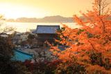 光明寺の銀杏黄葉
