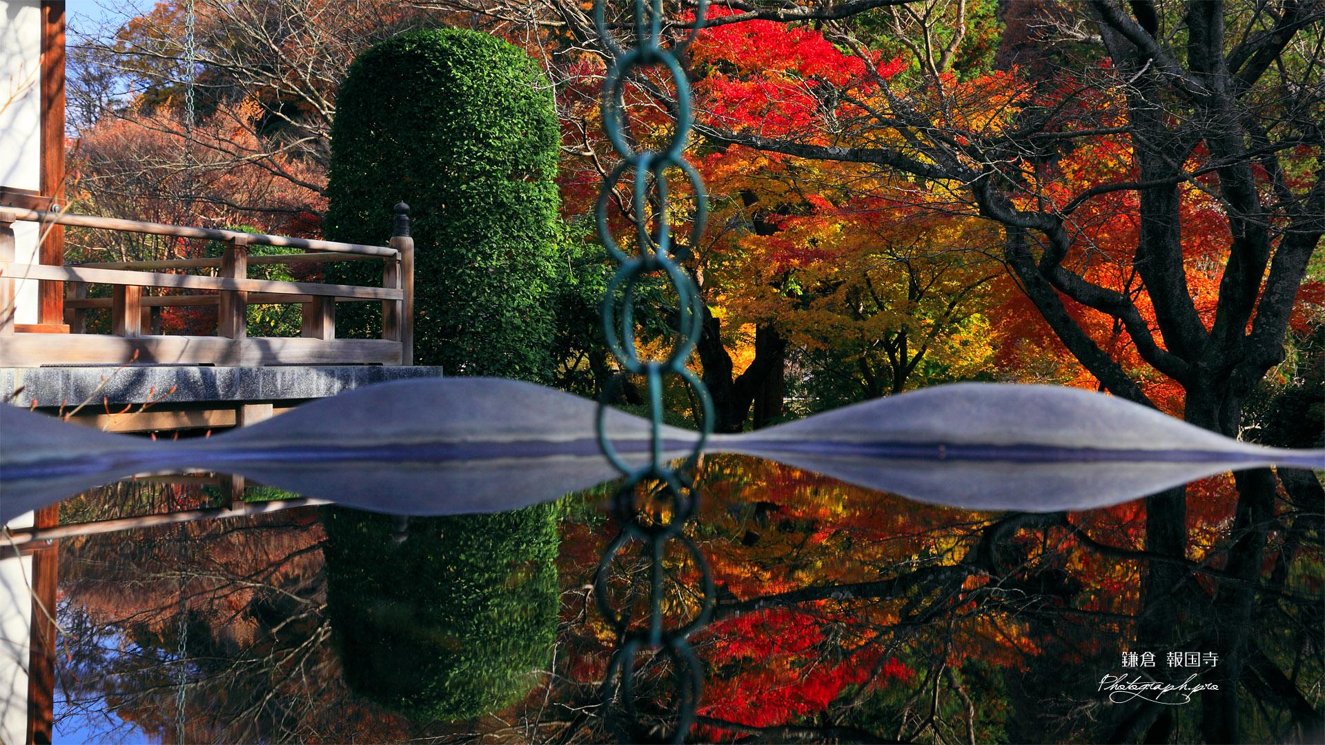 鎌倉報国寺 天水桶に映る紅葉