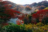 紅葉の衣張山