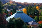 晩秋の浄明寺