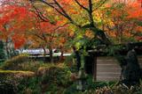 瑞泉寺 仏像と燈籠に紅葉