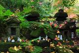 佐助稲荷神社 祠の散銀杏と落椿