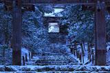 常照皇寺山門から雪の参道