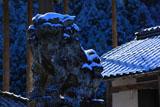 京都山国神社の狛犬