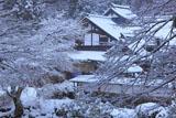 京都 雪化粧の峰定寺本坊