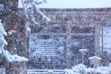 京都 雪降る峰定寺仁王門