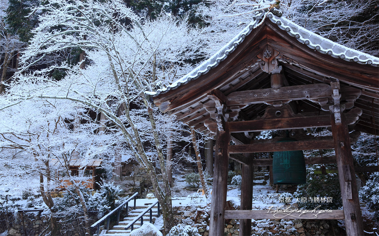 勝林院 鐘楼と雪の華 壁紙