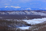 釧路湿原の丹頂と阿寒岳