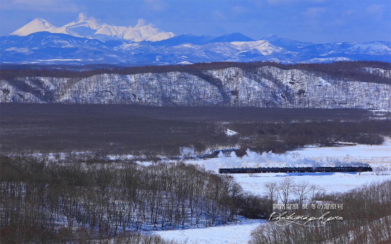 釧路湿原のSL冬の湿原号 壁紙