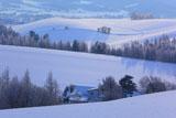 上富良野の冬の朝