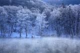 富良野 鳥沼公園の霧氷