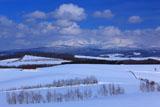 雪原の就実の丘