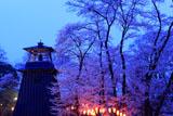 沼田公園の桜と城鐘